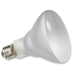 Picture of 65 WATT BR40 INDOOR FLOOD BULB