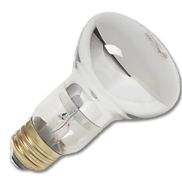 Picture of 30 WATT R20 INTERIOR REFLECTOR FLOOD BULB