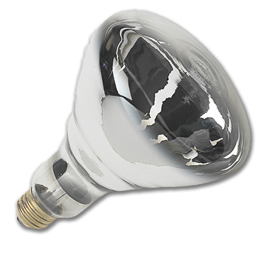 Picture of 250W CLEAR BR40 HEAT LAMP BULB