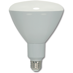 Picture of 12W R40 LED BULB