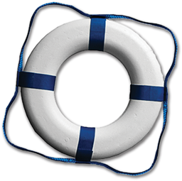 "Picture of 20"" PLASTIC RING BUOY"