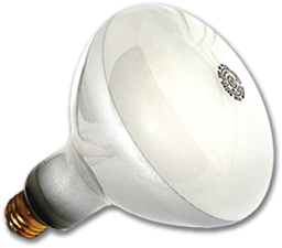 Picture of SCREW-IN POOL BULB - 12V/300W