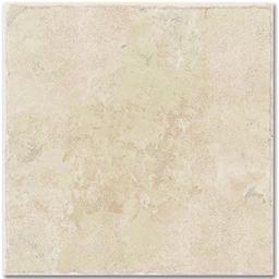 Picture of 1509 WINTON 12 X 12 FLOOR TILE - 45/BX