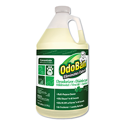 Picture of ODOBAN CARPET PET ODOR ELIMINATOR - GALLON